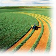 پاورپوینت کشاورزی پایدار