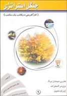 پاورپوینت کتاب جنگل استراتژی (کارآفرینی در قالب یک مکتب) تألیف هنری مینتزبرگ، بروس آلستراند و لمپل